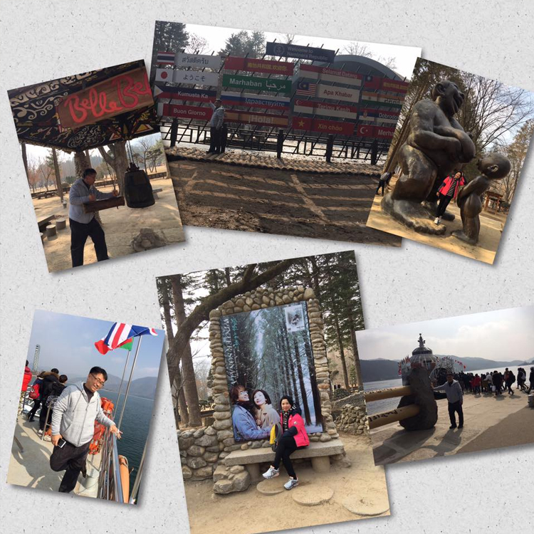 Article: Nami Island Tour Gallery