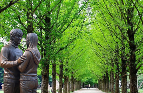 Nami Island Gallery
